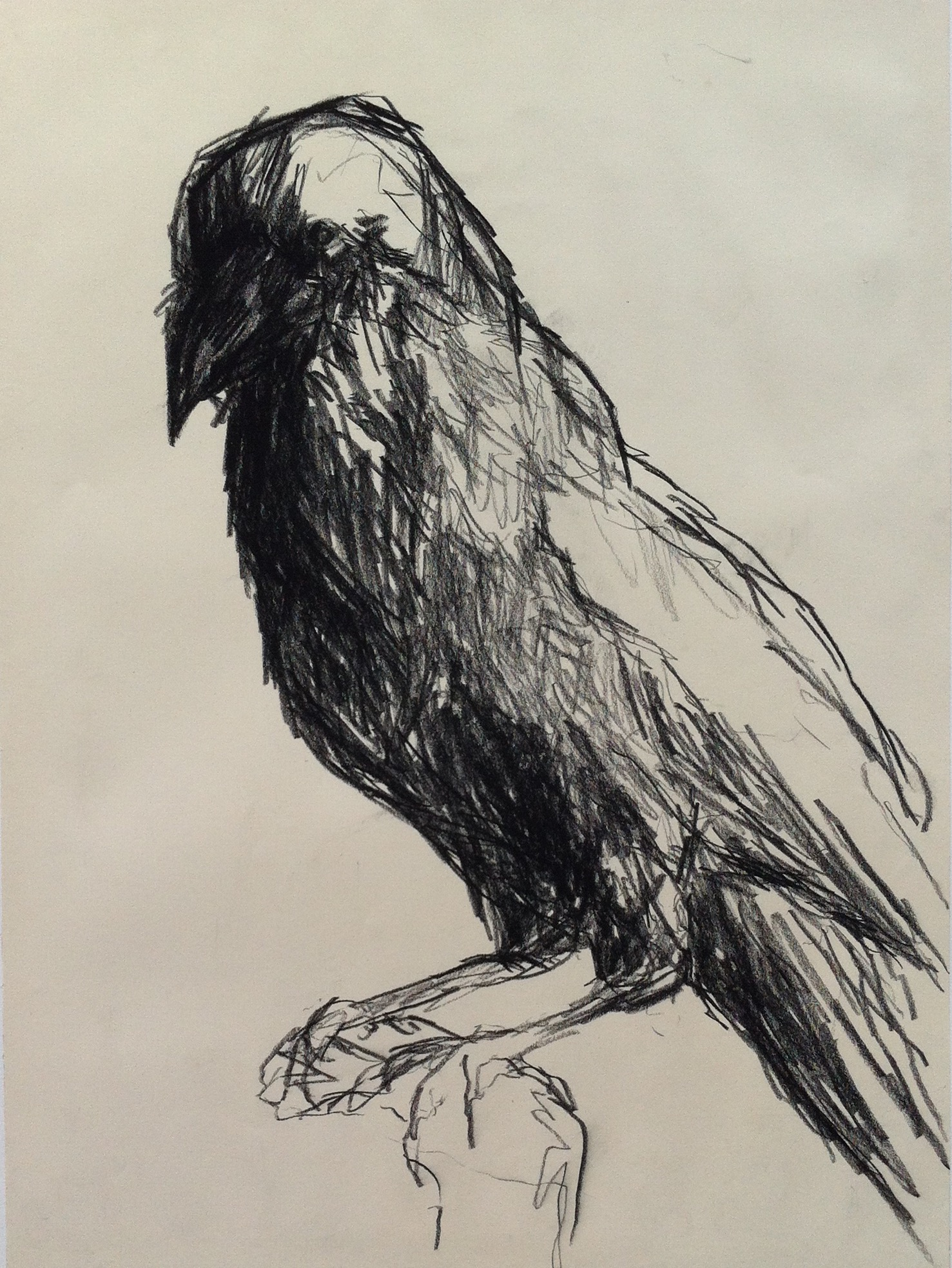 Black chalk drawings by Cecilie Nyman // GALLERY NYMAN