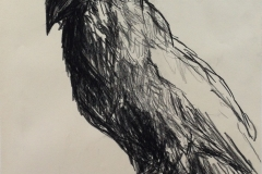 Raven, 2015. Art by Cecilie Nyman